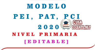 Modelo PEI – PAT – PCI 2019-2020