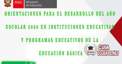 Orientaciones para el desarrollo del Año escolar 2020 en Instituciones Educativas y Programas Educativos de la Educación Básica