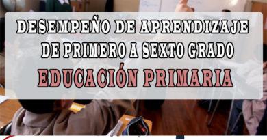 Desempeños de primero a sexto grado de educación primaria