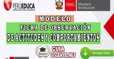 FICHA DE OBSERVACIÓN DE ACTITUDES Y COMPORTAMIENTOS