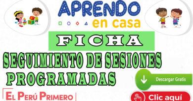 APRENDO EN CASA - SEGUIMIENTO DE SESIONES PROGRAMADAS