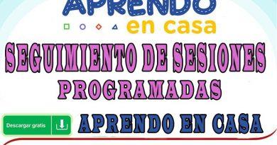 """FICHA PARA DOCENTES - SEGUIMIENTO DE SESIONES PROGRAMADAS """"APRENDO EN CASA"""""""