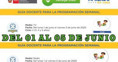 GUÍA DOCENTE PARA LA PROGRAMACIÓN SEMANAL – Nivel Inicial – Semana 9 [del 01 al 05 de junio]