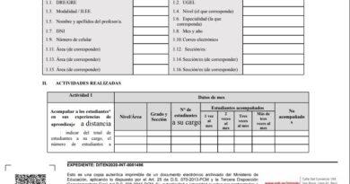 Minedu: Nuevo Formato Oficial Para Informe Mensual Del Mes De Junio