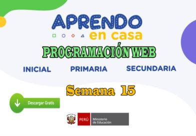 APRENDO EN CASA – Revisa aquí la programación web de la semana 15 del lunes 13 al viernes 17 de julio
