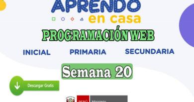 APRENDO EN CASA – Revisa aquí la programación web de la semana 20 del lunes 17 al viernes 21 de agosto