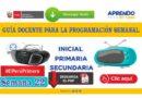 Aprendo en Casa: Guía docente para la programación SEMANA 22 Radio y TV del 31 al 04 de septiembre