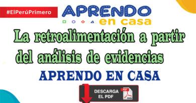La retroalimentación a partir del análisis de evidencias - Aprendo en Casa