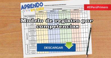 Modelo de registro por competencias