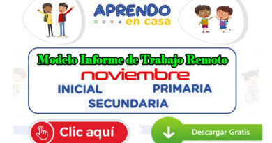 Modelo Informe de Trabajo Remoto Nivel Inicial, Primaria y Secundaria – Noviembre