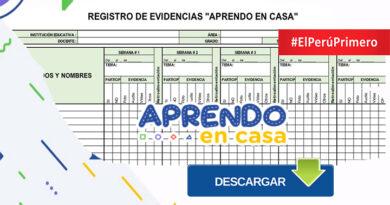 Modelo de control de registro de evidencias - Aprendo en Casa