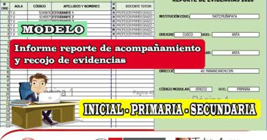 Modelo de informe reporte de acompañamiento y recojo de evidencias para los niveles de inicial, primaria y secundaria