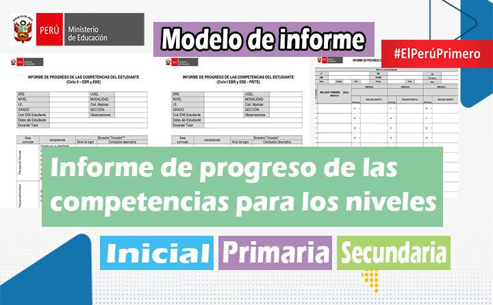 Modelo de informes de progreso de las competencias para los niveles de Inicial-Primaria y Secundaria
