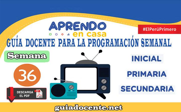 SEMANA 36 | Guía docente para la programación Radio y TV Aprendo en Casa del 07 al 11 de diciembre
