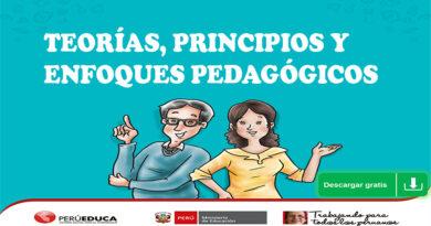 TEORÍAS, PRINCIPIOS Y ENFOQUES PEDAGÓGICOS